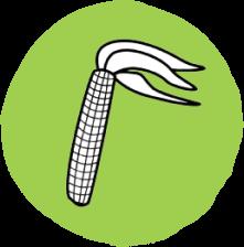 foodicon-chandra